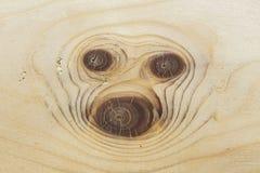 Tysta ned mops - cirklar på slutet av fnuren av trä Arkivfoto