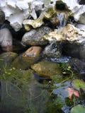 Tystnad av vatten Arkivfoton