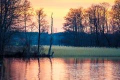 tystnad för ställe för natur för liggande för skönhetfiskarelake Arkivbilder