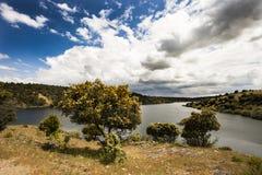 tystnad för ställe för natur för liggande för skönhetfiskarelake Royaltyfri Foto