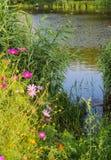 tystnad för ställe för natur för liggande för skönhetfiskarelake Royaltyfri Bild