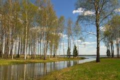 tystnad för ställe för natur för liggande för skönhetfiskarelake Fotografering för Bildbyråer
