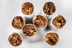 Tytoń w papierosu zakończeniu Zdjęcia Stock