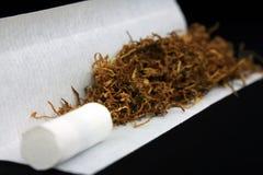 Tytoń z filtrową poradą i papierem zdjęcie stock