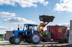 Tyumen, Rusia - 6 de agosto de 2017: Un cargador del universal carga el alimentador arrastrado de la paja para cocinar vacas Foto de archivo libre de regalías