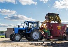 Tyumen, Rusia - 6 de agosto de 2017: Un cargador del universal carga el alimentador arrastrado de la paja para cocinar vacas Fotos de archivo libres de regalías