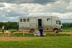 Transport for horses with trailer Stock Image