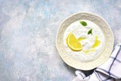 Tzatziki -酸奶调味汁用新鲜的黄瓜、莳萝和大蒜 Tra 图库摄影