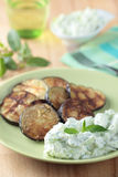 Tzatziki and roasted eggplant Royalty Free Stock Photo
