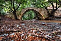 Tzelefos-Brücke - eine von venetianischen Brücken in Zypern lizenzfreies stockfoto