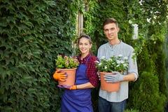 Uśmiechnięte faceta i dziewczyny ogrodniczki stoją z garnkami z roślinami w ich rękach przeciw ścianie zakrywającej z zielonym bl fotografia royalty free