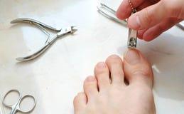 Uñas del pie del corte del hombre con las podadoras Uñas del pie del corte del varón a pie Primer del pie y de los dedos del pie  fotografía de archivo