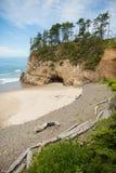 Uściśnięcie punktu stanu park w Oregon fotografia royalty free
