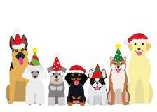 Uśmiechać się psy z przyjęcie gwiazdkowe kapeluszem royalty ilustracja