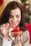 Uśmiechnięta brunetka otwiera prezent na święto bożęgo narodzenia Zdjęcie Stock