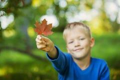 Uśmiechnięta chłopiec trzyma czerwonego jesień liść w ręce, miękka ostrość obrazy royalty free