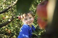 Uśmiechnięta chłopiec w jabłczanym sadzie Zdjęcie Royalty Free