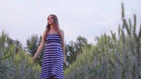 Uśmiechnięta dziewczyna chodzi przez pszenicznego pola przy zmierzchem zbiory