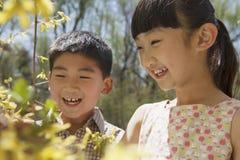 Uśmiechnięta młoda chłopiec i dziewczyna patrzeje kolorów żółtych okwitnięcia na drzewie w parku w wiośnie obrazy royalty free