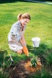 Uśmiechnięta ogrodniczka bogaci ziemię po tym jak zasadzać kwitnie w ogrodowym łóżku zdjęcie stock