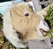 Uśmiechnięta Owłosiona Zabawkarska Końska głowa zdjęcie stock