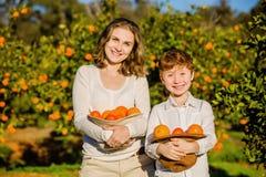 Uśmiechnięta szczęśliwa matka i syn trzymamy pomarańcze w ich zdjęcia stock