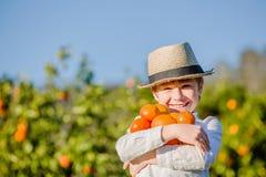 Uśmiechnięta zdrowa chłopiec na cytrusa gospodarstwa rolnego mienia pomarańczach zdjęcie royalty free