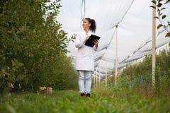 Uśmiechnięty agronom z notatnik pozycją w jabłczanym sadzie Zdjęcia Stock