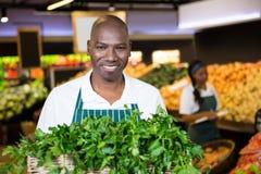 Uśmiechnięty męski personel trzyma kosz świezi warzywa przy supermarketem Obrazy Stock