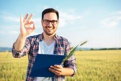 Uśmiechnięty młody agronom lub rolnik sprawdza pszenicznego pole zanim żniwo Patrzeje bezpośrednio przy kamerą, pokazuje OK znaka fotografia stock