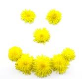 uśmiechu kolor żółty Zdjęcia Stock