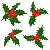 Uświęcone jagody ustawiać Jemioła - Bożenarodzeniowa symbolu wektoru ilustracja Obraz Royalty Free