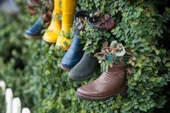 Używać buty jako waza zasadzać dla dekoracji Pomysły, dekoracyjny i kreatywnie obrazy royalty free