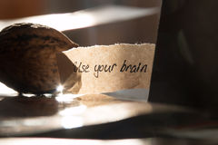 Używać twój mózg Fotografia Stock