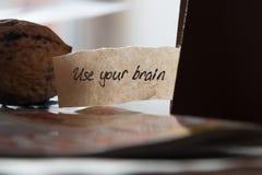 Używać twój mózg Zdjęcie Stock