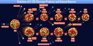 U-235分裂产物和缓发中子的辐射 免版税库存照片