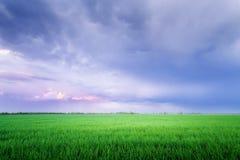 Σύννεφα άνω του τομέα/του φωτεινού ζωηρόχρωμου u βραδιού άνοιξη εικόνων Στοκ Φωτογραφία
