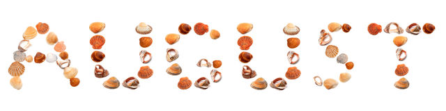 A U G U S T text composed of seashells Royalty Free Stock Photos
