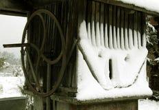 uśmiech Fotografia Stock