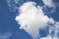 Uśmiech ryba chmura Fotografia Royalty Free