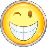 uśmiechy Zdjęcia Stock