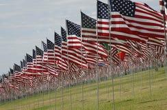 U S Флаги - мемориальный дисплей Стоковые Фотографии RF