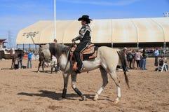 U.S.A., Arizona: Cavallerizza sul cavallo arabo Fotografie Stock Libere da Diritti