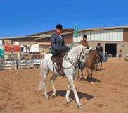 U.S.A., AZ: Cavaliere sul cavallo arabo - sella laterale fotografia stock libera da diritti