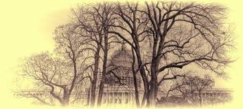 U S Bóveda del capitolio bajo construcción--Invierno 2015 Imagenes de archivo