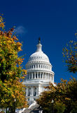 U.S. Capital Building Washington DC Autumn Yellow Royalty Free Stock Photos