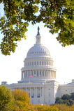 U. S. Capitol in Autumn. The United States Capitol surrounded by fall foliage stock photo