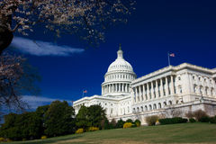 U.S. Capitol on a sunny spring Royalty Free Stock Image