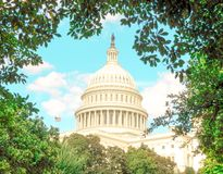 U.S. Capitol Washington D.C. framed by trees stock photo