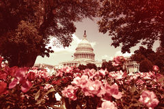 U.S. Capitol in Washington with Instagram filter look Royalty Free Stock Images